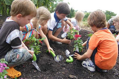 158 - gardening