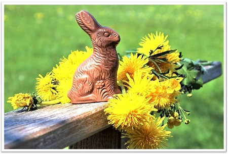 facts about chocolate bunnies