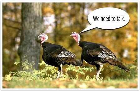 turkey talk - food idioms - 158 main restaurant - jeffersonville vt